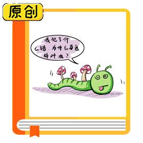 冬虫夏草类产品的消费提示 (4)