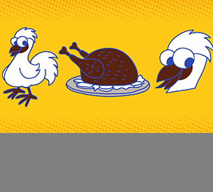食品有意思:乌鸡为什么一身黑?